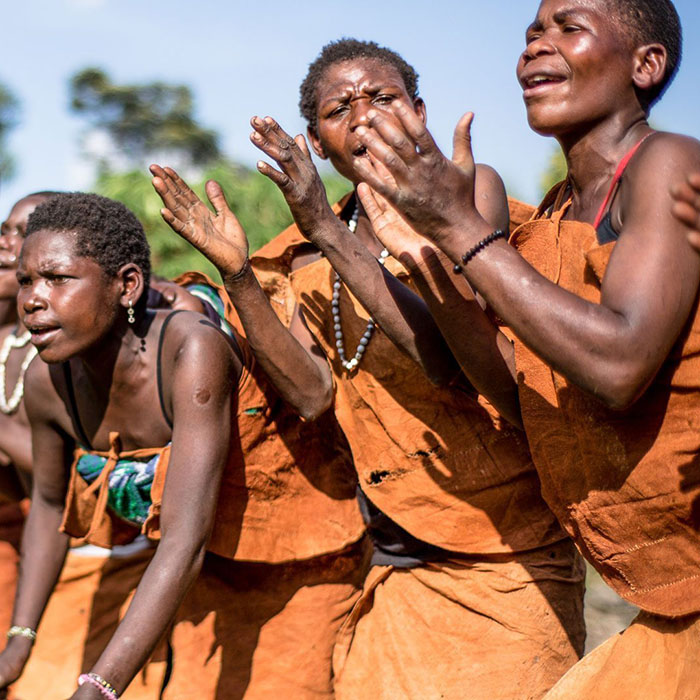 Uganda Safari Adventures